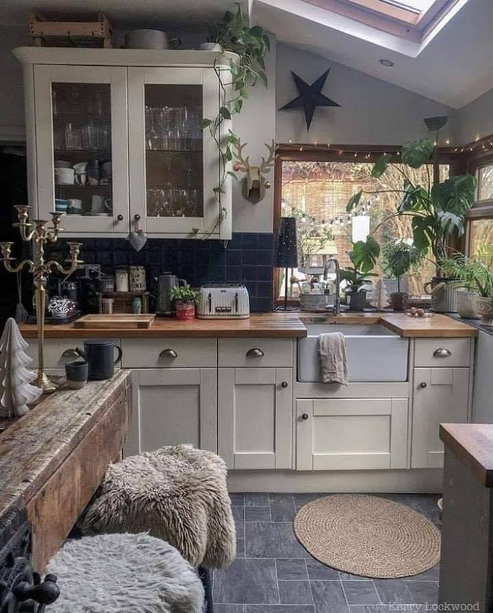 Cool rustic plant kitchen