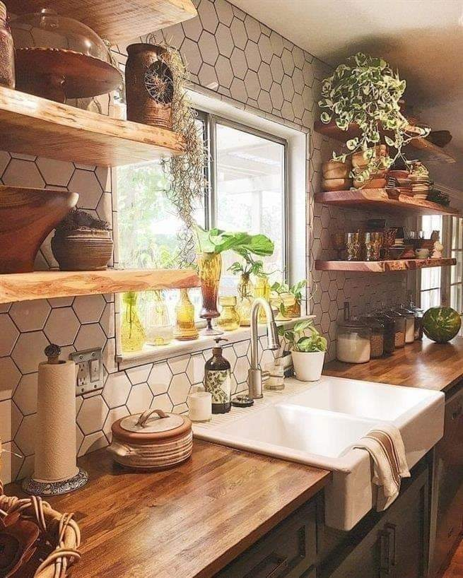 Kitchen decorated with plants and items