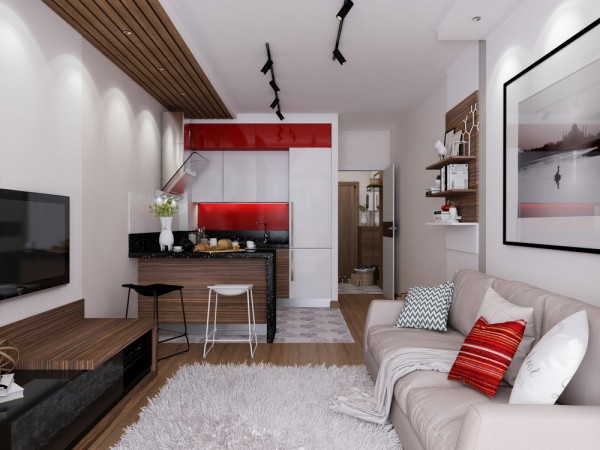 Tiny apartment living room interior design